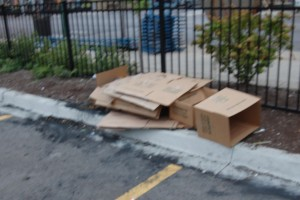 Empty boxes dumped inside lot along Devon Avenue.